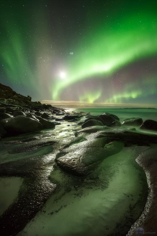 aurora luna uttakleiv