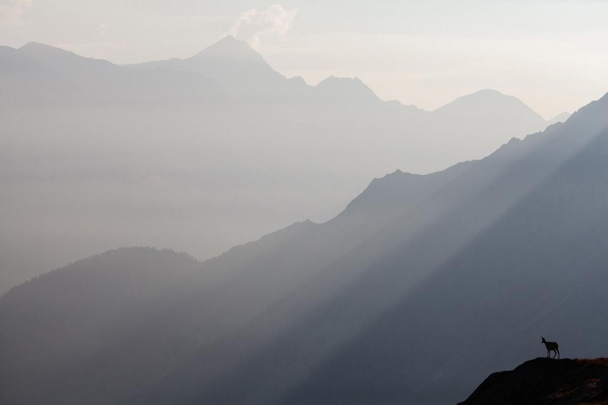 04/11/2018 - Alessandro Zaffonato - Over The Mountains