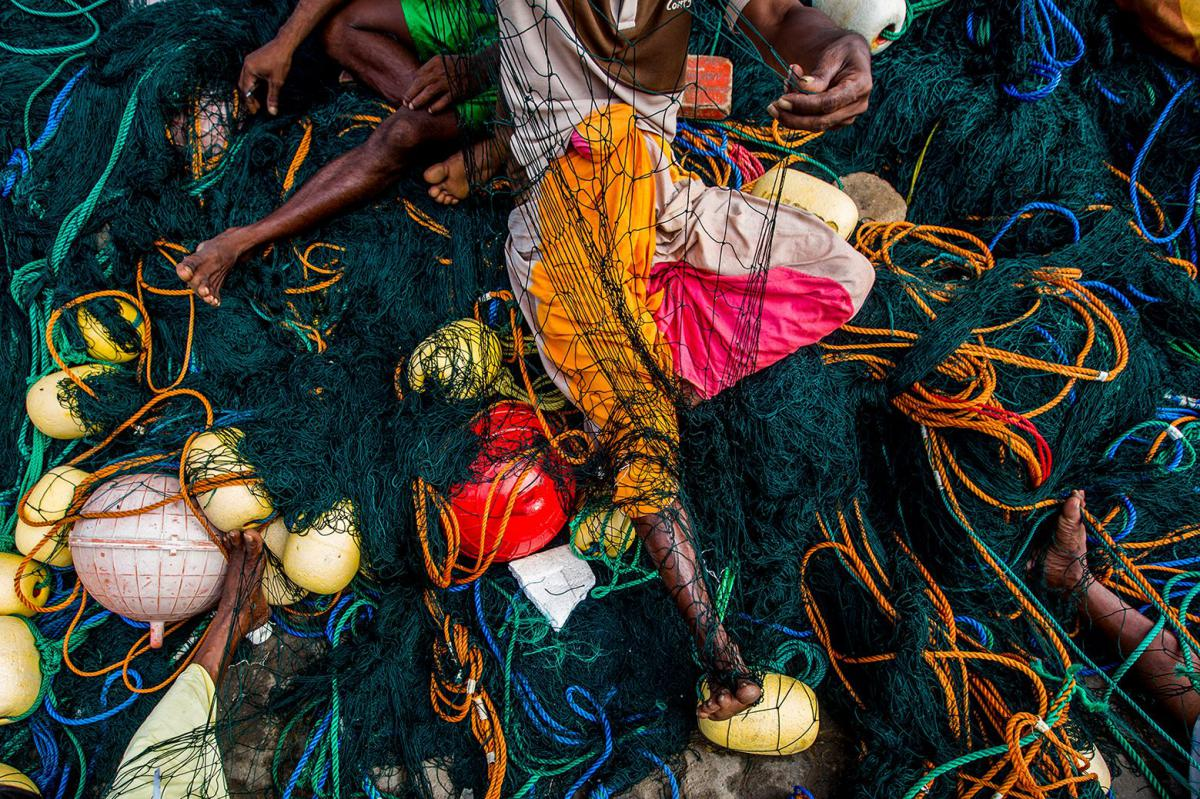 21/11/2018 - Rui Duarte Silva - Fishing Nets