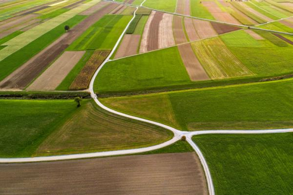 Andrej Tarfila - Crossroads