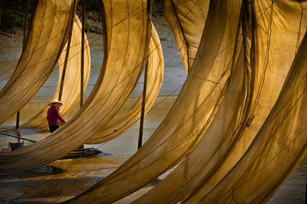 Qingsheng Sun - Flying Net