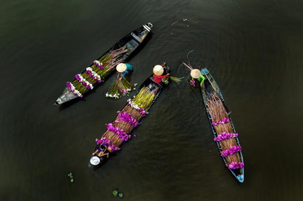 Kihwan Na - Water Lilies And Women