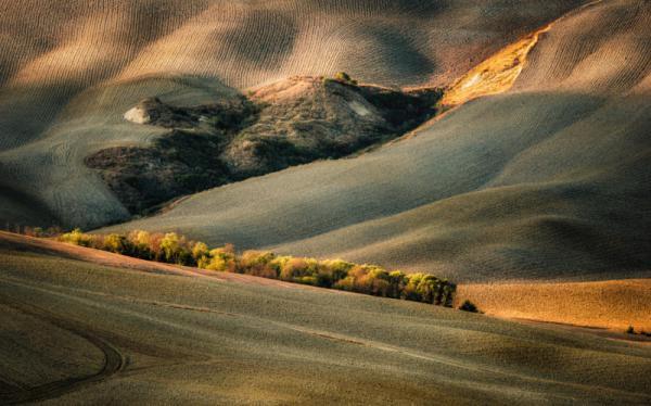 Marek Boguszak - Wild Tuscany