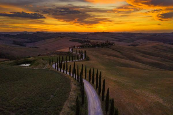Angiolo Manetti - Following The Sunset